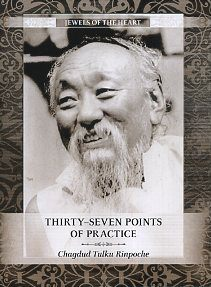 THIRTY-SEVEN POINTS OF PRACTICE. Chagdud Tulku Rinpoche.