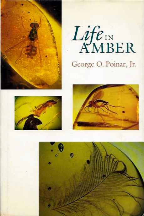 LIFE IN AMBER. George O. Poinar.