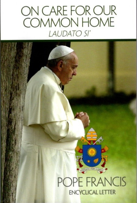 ON CARE FOR OUR COMMON HOME; Laudati Si'. Pope Francis.