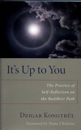IT'S UP TO YOU.; The Practice of Self Reflection on the Buddhist Path. Dzigar Kongtrul.