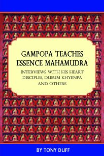 GAMPOPA TEACHES ESSENCE MAHAMUDRA; Interviews with his Heart Disciples, Dusum Khyenpa and Others. Tony Duff.